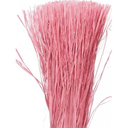 Raphia rose