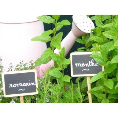 4 Etiquettes à planter  27.5cm / 7 x 5cm