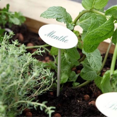 Etiquette jardin en métal Menthe