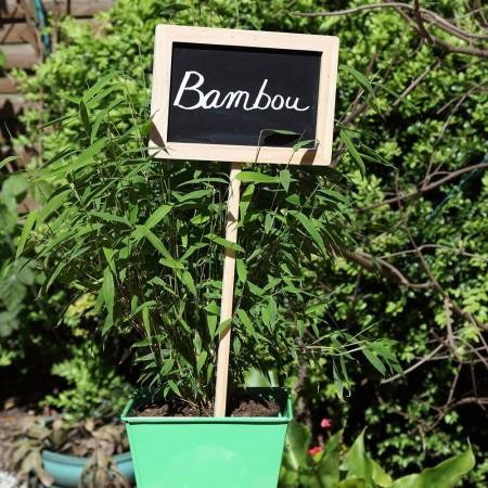 Grande etiquettes marque plante bois et ardoise