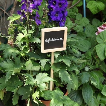 marque plante bois et ardoise carrée -3