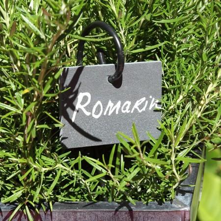 etiquette marque plante en ardoise naturelle