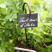 marque plante, etiquette Ardoise naturelle 9.5 x 7