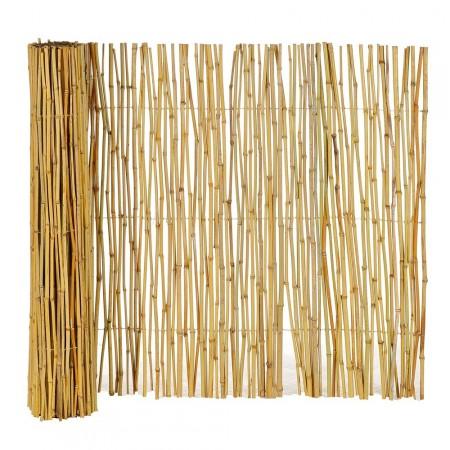 Canisse Bambou Naturel 1