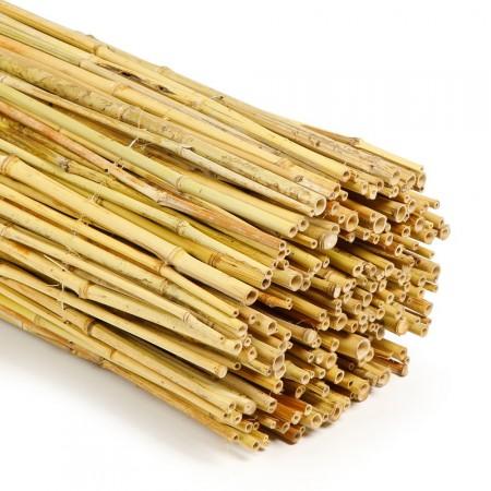 Canisse Bambou Naturel détail