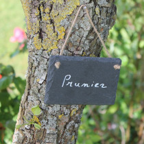 Etiquette Jardin Ardoise Naturelle - x3
