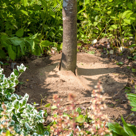 Paillage Jardin Naturel