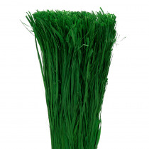 Raphia Vert Foncé 400 g
