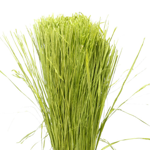 Raphia Vert Fluo 400 g