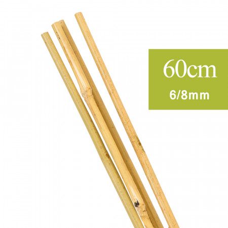 Tuteur Plante en Bambou naturel 60 cm