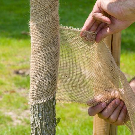 Toile de Jute 10 cm protection arbre au jardin