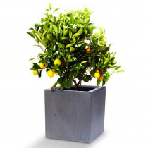 Bac à fleurs Cube Design en fiberstone gris