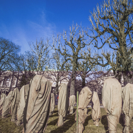voile hivernage arbre fruitier