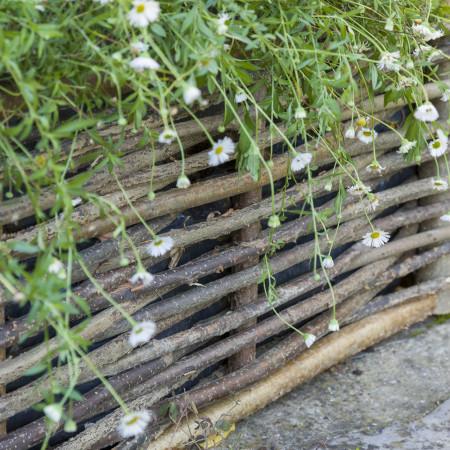 Bordure de jardin en bois de noisetier tressé