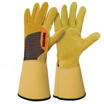 gants de débroussaillage des ronces, murier et rosier
