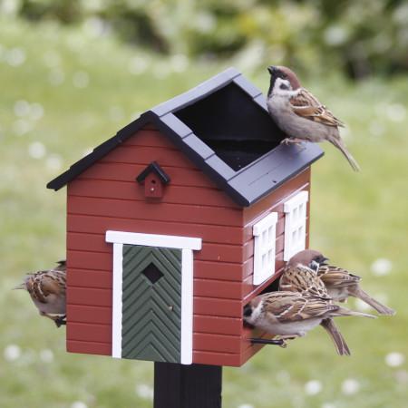 Mangeoire à oiseaux avec bain, Rouge dans le jardin