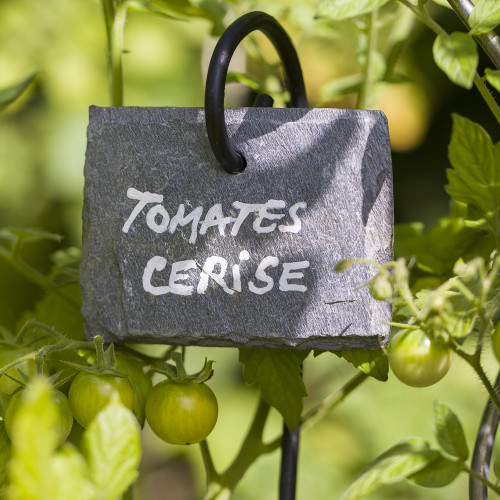 Etiquette de jardin en ardoise naturelle de Cayrol